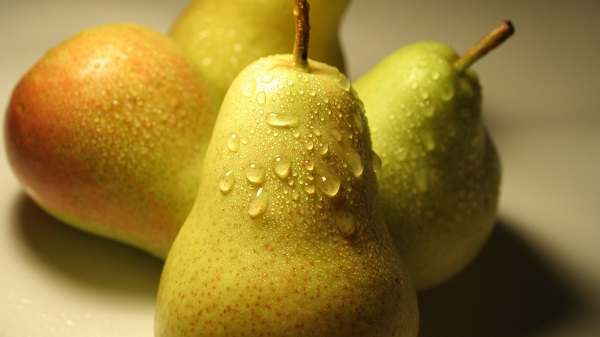 Pear Forest Beauty