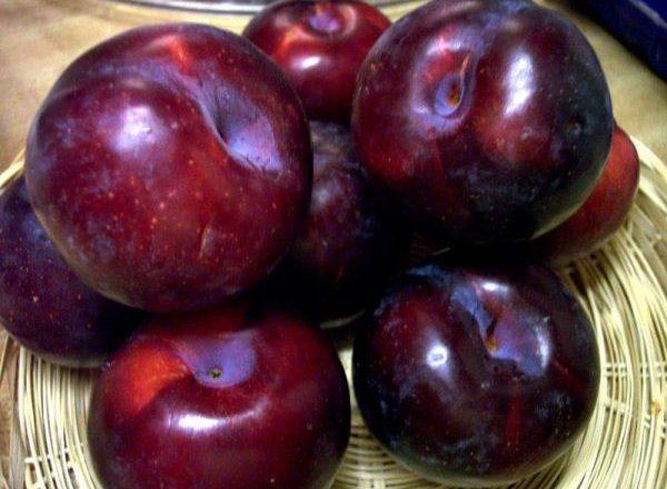 Beneficiile și răul prunelor
