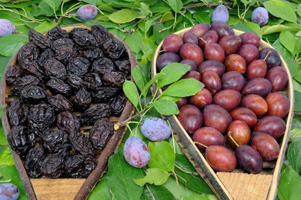 Prunele și prunele