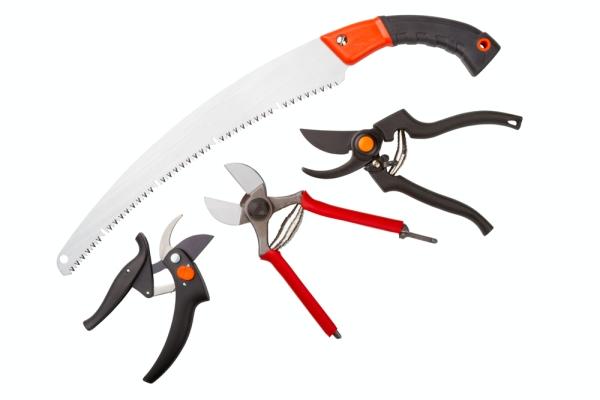 Cuțitul, ferăstrăul, cuțitul de grădină și cuțitul trebuie să fie ascuțite și dezinfectate.