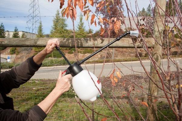 Fiecare arbore este pulverizat cu un baldachin cu o țintă specifică.