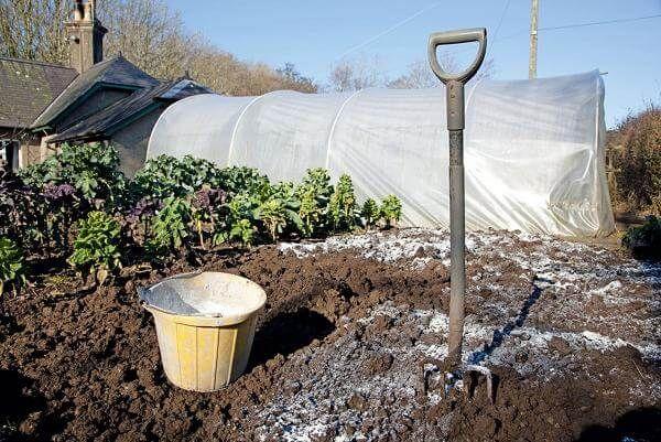 Fertilizarea solului pentru sapaturi
