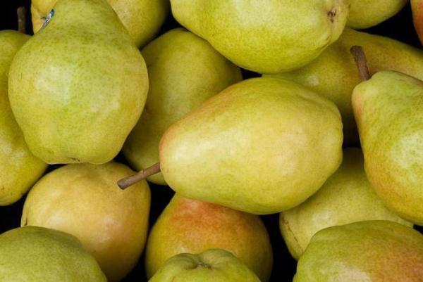 Soiul Veles Pears