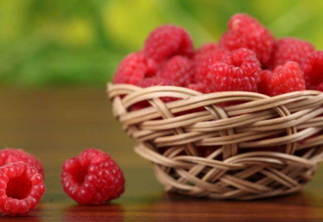 Raspberry varietati