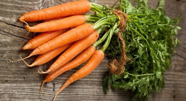 plantarea morcovilor folosind metoda kizima